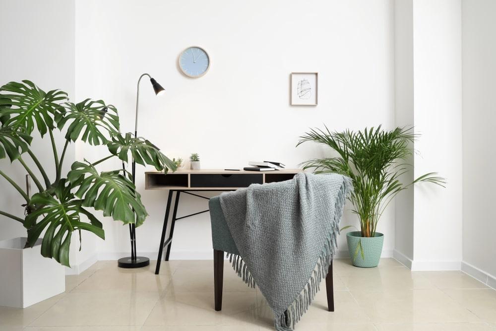 phong cách tropical trong thiết kế
