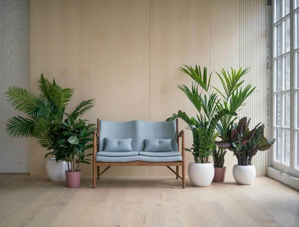 Phong cách thiết kế nội thất nhiệt đới ấn tượng